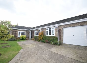 Thumbnail 4 bed detached bungalow for sale in Back Lane, Badwell Ash, Bury St. Edmunds