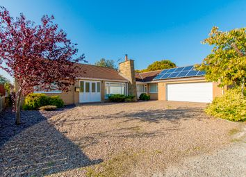 Thumbnail 4 bed detached bungalow for sale in The Drive, Barnby Moor, Retford