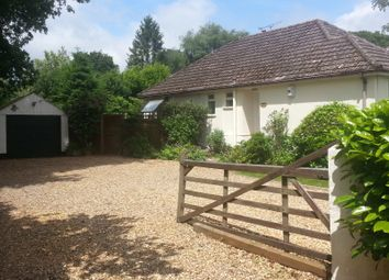 Thumbnail 2 bed bungalow to rent in Hayes Lane, Wimborne