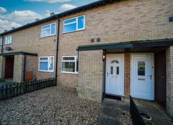 Thumbnail 2 bed terraced house to rent in Roebuck Drive, Lakenheath, Brandon