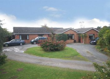 Thumbnail 5 bed detached bungalow for sale in Sutton St. Nicholas, Hereford