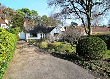 Thumbnail 3 bed bungalow for sale in Lower Parkstone, Poole, Dorset