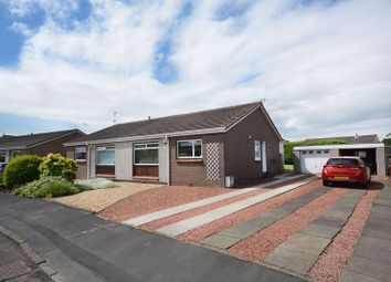Thumbnail 2 bed semi-detached bungalow for sale in Lothian Crescent, Stirling