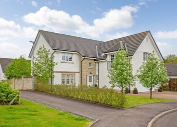 Thumbnail 5 bed detached house for sale in Gadwall Grove, Motherwell, North Lanarkshire