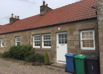 Thumbnail 2 bed terraced house to rent in Ladybank, Cupar