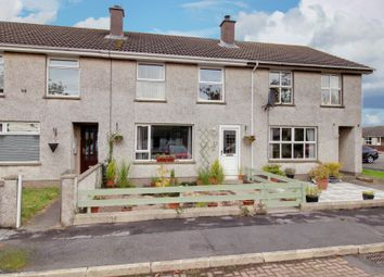 Thumbnail 3 bed terraced house for sale in Meadow Park, Ballywalter