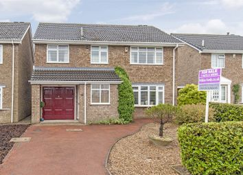Thumbnail 4 bed detached house for sale in Arklow Close, Hasland, Chesterfield