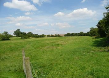 Thumbnail Equestrian property to rent in Flewton End, Milton Ernest, Bedford