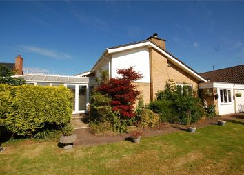 Thumbnail 4 bed detached bungalow to rent in Middle Street, Nether Heyford, Northampton
