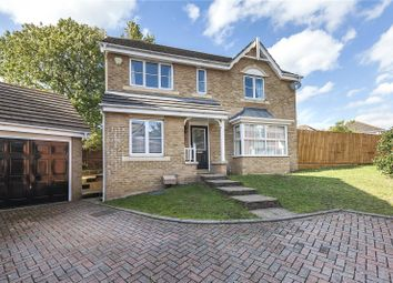 Thumbnail 4 bed detached house for sale in Blenheim Close, London