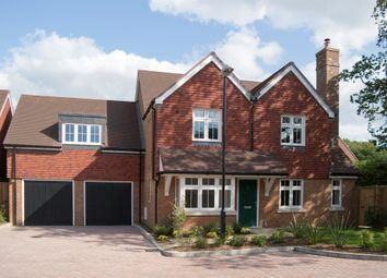 Thumbnail 5 bed detached house for sale in Worthing Road, Horsham
