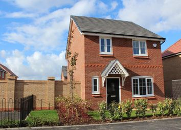 Thumbnail 4 bed semi-detached house to rent in Plot 196, Lyn, Oleander Way