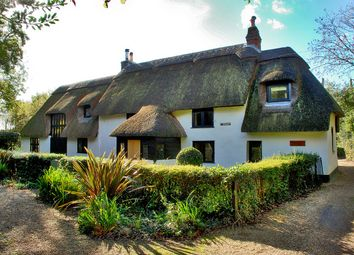 Thumbnail 3 bed cottage for sale in Dark Lane, Hinton