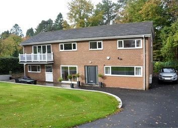 Thumbnail 5 bed detached house for sale in The Warren, Meadowfield Road, Stocksfield, Northumberland