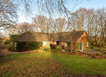 Thumbnail 4 bed detached house for sale in Stapley Lane, Ropley, Alresford, Hampshire