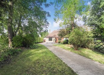 Thumbnail 3 bed semi-detached bungalow to rent in Tring Road, Edlesborough