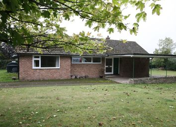 Thumbnail 4 bed detached bungalow to rent in Horsemoor, Chieveley, Newbury