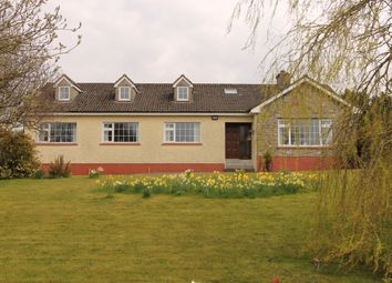 Thumbnail 4 bed detached house for sale in Ardcroney, Nenagh, Tipperary