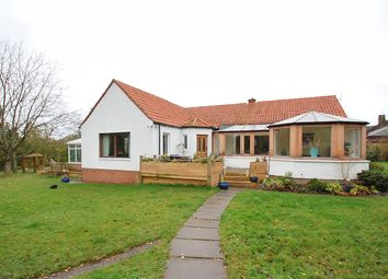 Thumbnail 3 bed detached bungalow for sale in Westfield Road, Avonbridge