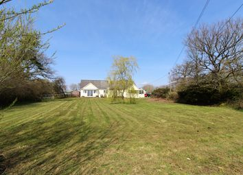 Thumbnail 4 bed detached bungalow for sale in St. Giles-On-The-Heath, Launceston