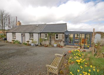 Thumbnail 2 bed cottage for sale in Rhosygell, Devils Bridge, Aberystwyth