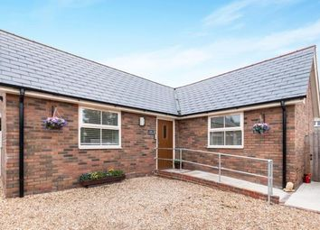 Thumbnail 1 bed bungalow for sale in North Warnborough, Hook, Hampshire