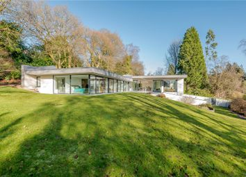 Thumbnail 4 bed detached house for sale in Bunch Lane, Haslemere, Surrey