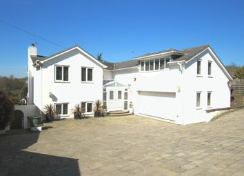 Thumbnail 5 bed detached house to rent in Hill Brow, Hove