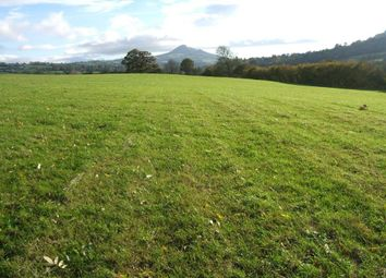 Thumbnail Land for sale in Walterstone, Herefordshire