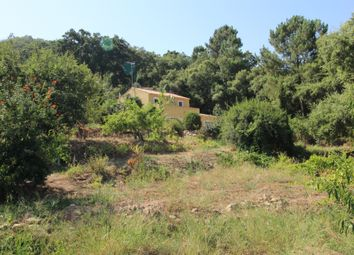 Thumbnail 2 bed villa for sale in Monchique (Parish), Monchique, West Algarve, Portugal
