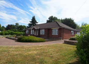 Thumbnail 4 bedroom detached bungalow to rent in Church Lane, Wicklewood, Wymondham, Norfolk