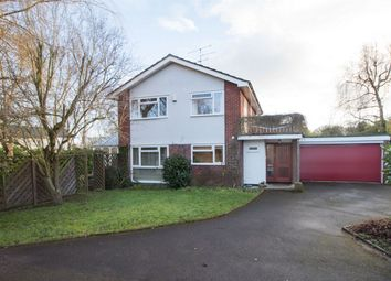 Thumbnail 4 bed detached house for sale in Chapel Lane, Riseley, Reading