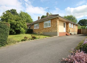 Thumbnail 2 bedroom semi-detached bungalow for sale in Park Rise, Horsham
