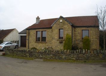 Thumbnail 3 bed detached bungalow to rent in Swallow Cottage, Chance Inn, By Cupar, Fife