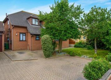 Thumbnail 4 bed detached house for sale in Hawkwell, Hockley, Essex