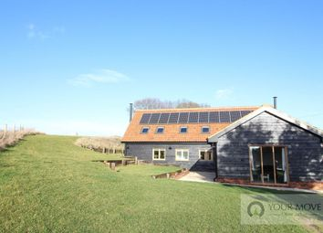 Thumbnail 3 bed detached house for sale in Thorpe-Next-Haddiscoe, Norwich