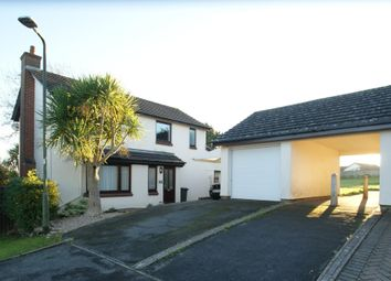 Thumbnail 4 bed detached house for sale in Freshwater Drive, Paignton