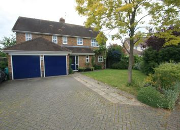 Thumbnail 4 bed detached house to rent in Mile End, Colchester, Essex