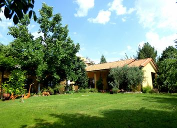 Thumbnail Farm for sale in P783, Olive Grove With Irrigation And A House, Portugal, Mirandela, Portugal