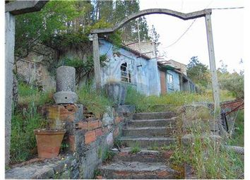 Thumbnail 1 bed cottage for sale in Regorices, Sertã (Parish), Sertã, Castelo Branco, Central Portugal