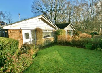 Thumbnail 2 bed bungalow to rent in Southcote Drive, Dronfield Woodhouse
