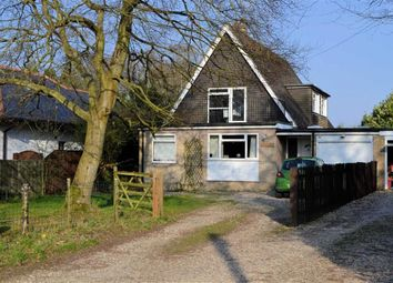 Thumbnail 4 bedroom detached house for sale in Little Lane, Upper Bucklebury, Berkshire