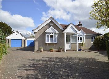 Thumbnail 4 bedroom detached bungalow for sale in Burry Road, St Leonards, East Sussex