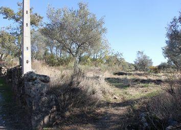Thumbnail Farm for sale in Penamacor (Parish), Penamacor, Castelo Branco, Central Portugal