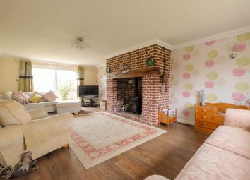 Thumbnail 5 bed detached house for sale in Back Lane, Scoulton, Norwich