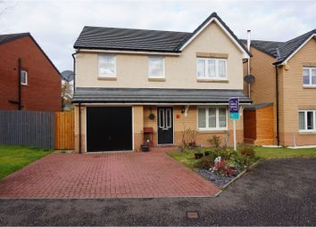 Thumbnail 4 bedroom detached house to rent in Kilgannan Drive, Falkirk