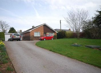 Thumbnail 3 bed detached bungalow for sale in The Ryders, Ashperton, Herefordshire