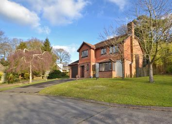 4 bed detached house for sale in Quiet No Through Road, 1 Mile From Village Centre, Storrington RH20