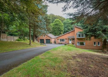 Thumbnail 4 bed detached house for sale in The Glen, Heaton