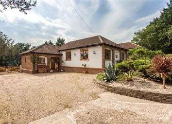 Thumbnail 3 bed bungalow for sale in Dry Street, Langdon Hills, Basildon, Essex